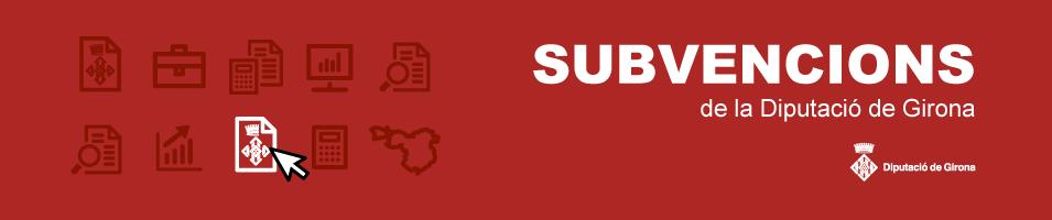 Subvencions genèric
